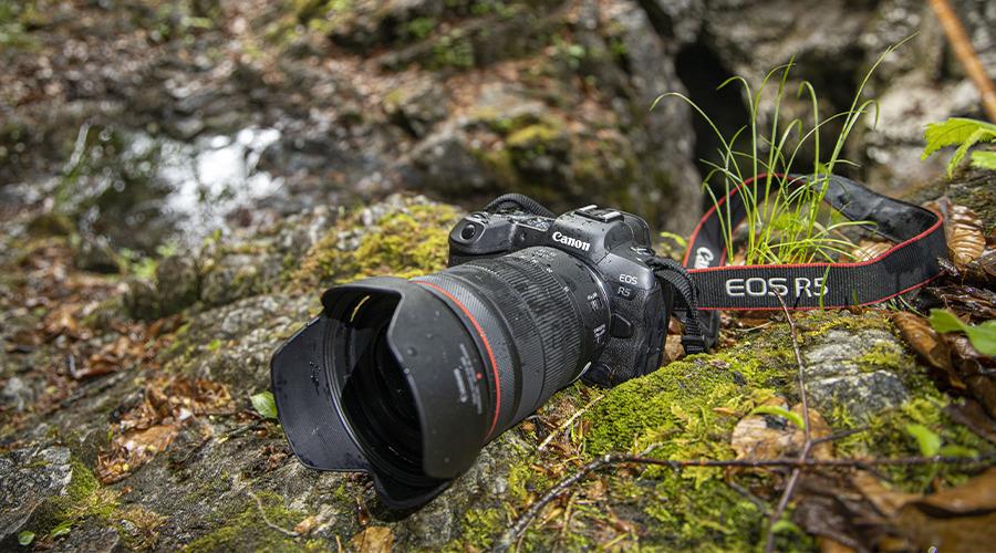 Canon EOS R5 und R6 – das Imperium schlägt zurück